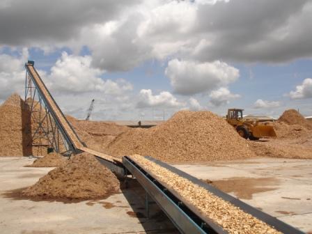 Băng tải dăm gỗ Thành Công