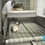 Băng tải thủy sản Thành Công chất lượng Nhật Bản