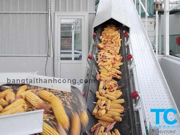 Băng tải thức ăn gia súc