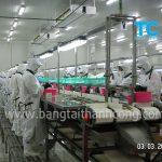 Băng tải chế biến thủy hải sản